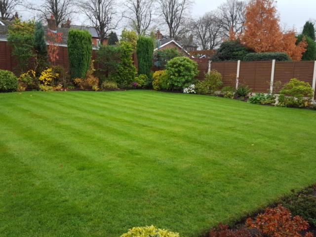 Warrington Lawn Treatment