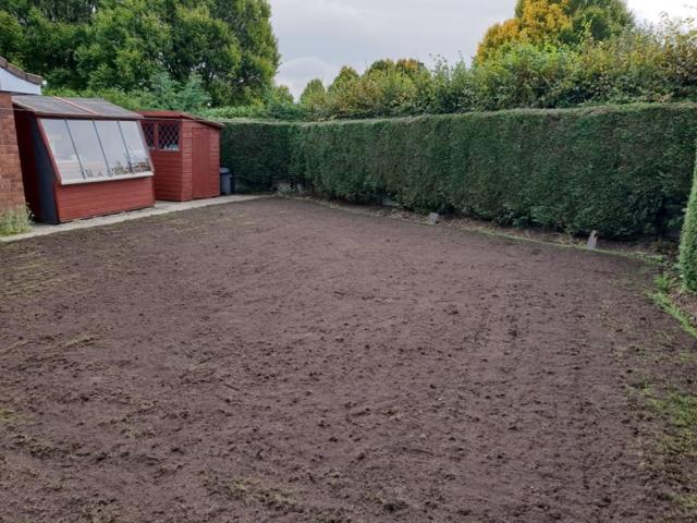 Drought damage in Lawn Warrington