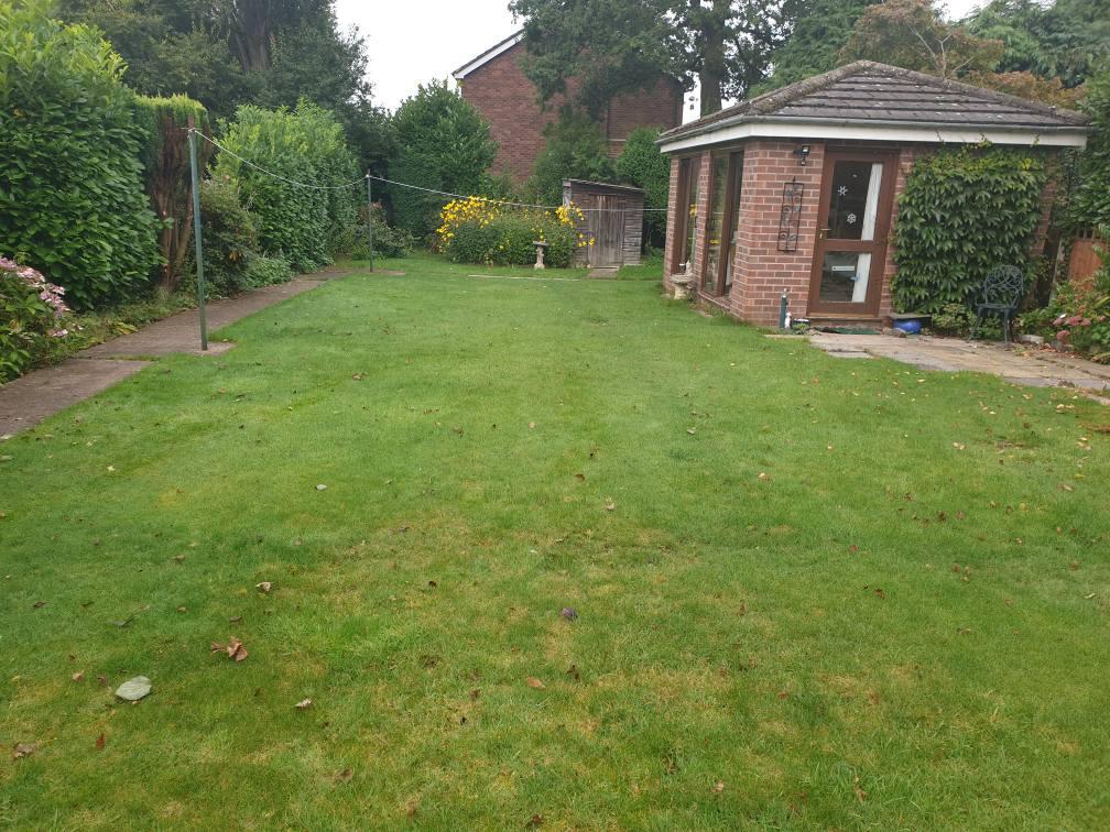 Scarification, lawn renovation, seeding,