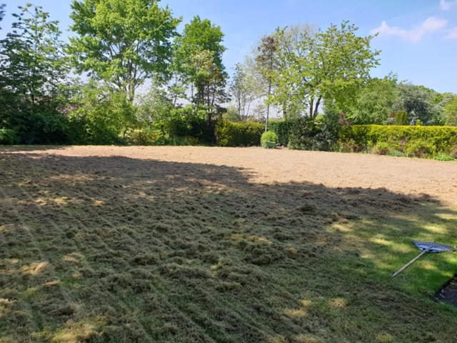 Scarification for moss and thatch