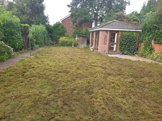 Scarification and over seeding a lawn