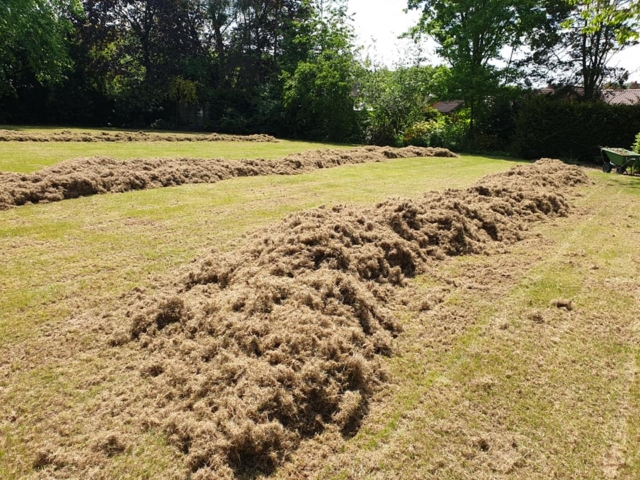 Moss and thatch removal