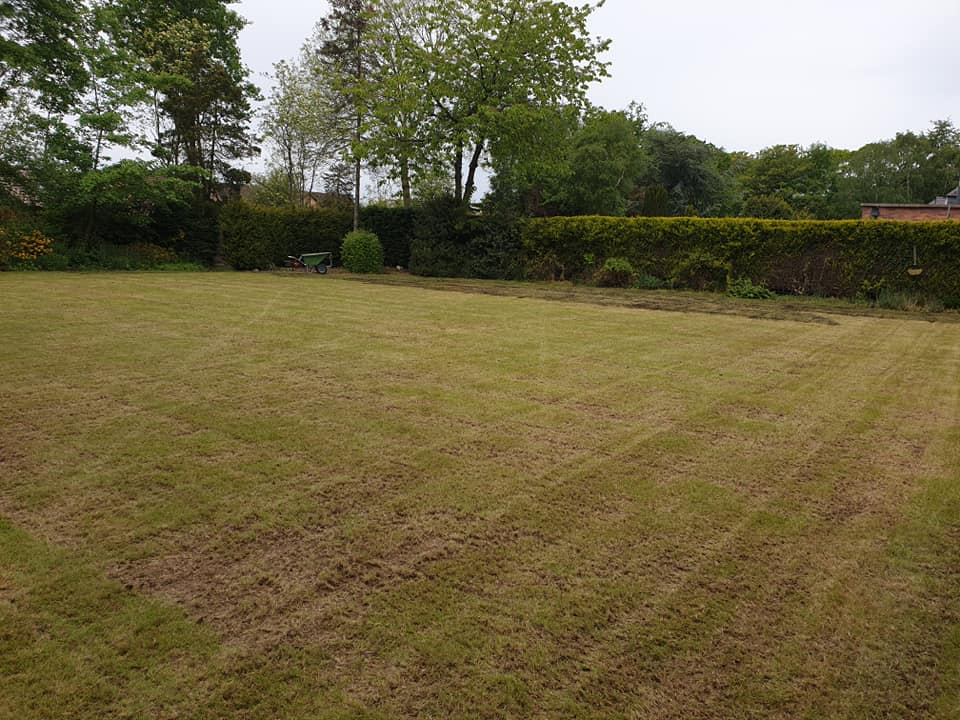 Scarified and aerated