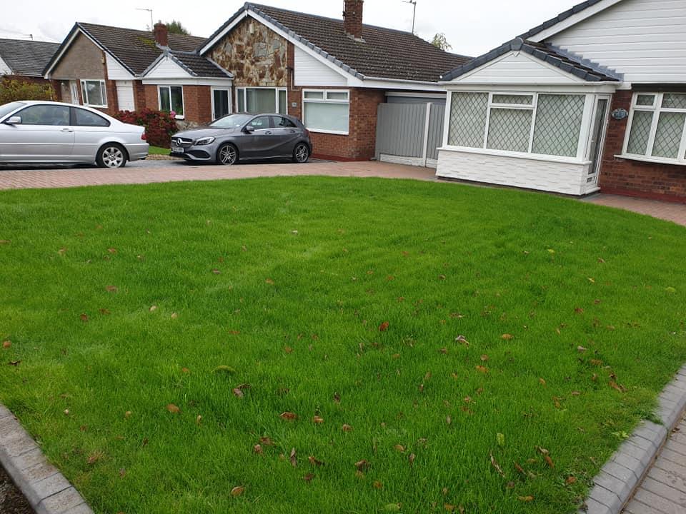 Lawn scarification and seeding Winwick