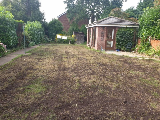 Top dressing and over seeding a lawn